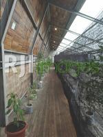 Aplikasi kombinasi kayu, bamboo, dan baja ekspos  pada bangunan modern