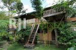 Kamar untuk rombongan Rimbono homestay