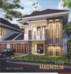 the paradise tipe magnolia